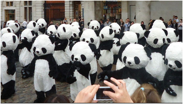 Promo Staff in Panda Costumes